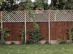 Fence with trellis