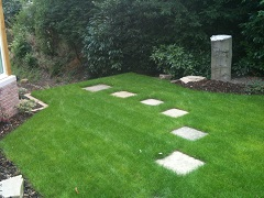 Lawn with stepping stones